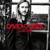 David Guetta Ft Emeli Sandé   What I Did For Love