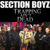 Section Boyz - Trapping Ain't Dead