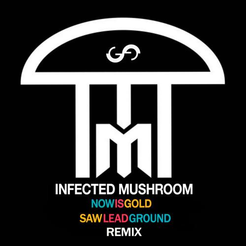Infected Mushroom Mambacore