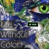 Life without Color - Documentary by Robb Jacobson