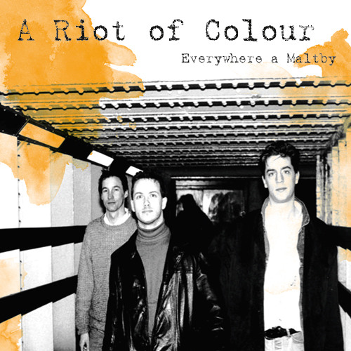 A Riot Of Colour - Swallow