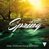 Download SPRING by Swen Baez Mp3