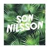 Tracy Chapman - Fast Car  (Son Nilsson remix)