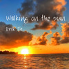 Erik Te - Walking On The Sun