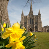 Thomas Hewitt Jones: This Joyful Eastertide