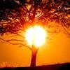 Devocional - Quando estou Fraco então sou Forte (2 Coríntios 12:10)