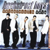 Backstreet Boys- Everybody (Backstreet's Back) COVER