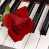 Las canciones más lindas EN VIVO