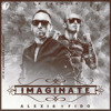 Alexis y Fido Feat Maluma - Imaginate Remix Dj Pato Portada del disco