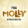 Tyga ft. Wiz Khalifa & Mally Mal - Molly (Instrumental Remake)