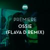 Premiere: Ossie 'The Buzz' (Flava D remix)