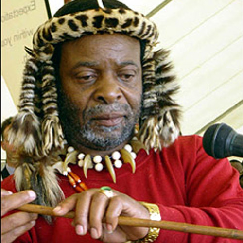South African citizen files charges against Zulu King