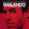 Enrique Iglesias Ft. Sean Paul - Bailando (Nathan Arthurs Remix)