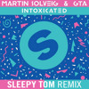 Martin Solveig & GTA - Intoxicated (Sleepy Tom Remix)