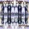 Sixsense Vs. Vimana Shastra - Floating Beings - DEMO Cut (146 Bpm)