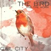 The Bird and the Worm - Owl City (cover)