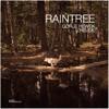 Gorje Hewek & Izhevski - Shanti Radio: Raintree