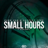 Damn Dan & Suspect Zero Ft. Nathan Brumley - Small Hours (Original Mix) [REMIX CONTEST] [FREE DL]