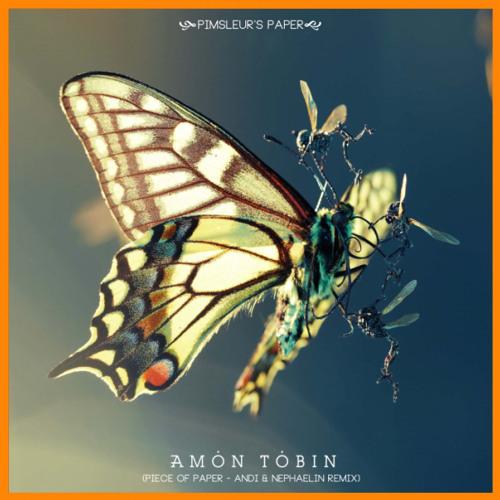 Amon Tobin│Pimsleur's Paper (Andi & Nephaelin Remix)