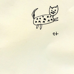 i think you're really beautiful // starry cat