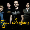 Gin Blossoms Follow You Down Live Acoustic