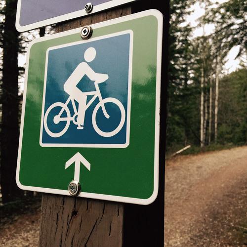 Proponent Jason Zimmer explains idea for new Mt. Revelstoke bike trail