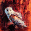 Owls mp3
