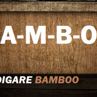 Vince Digare - Bamboo (Original Mix)