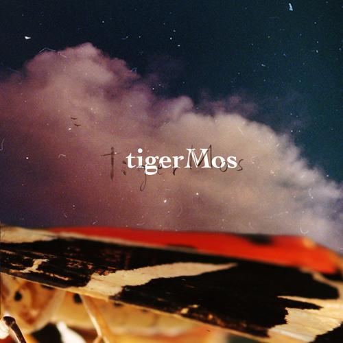 HolyRover by tigerMos