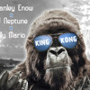 Stanley Enow Feat. Dj Neptune & Willy Mario - King Kong