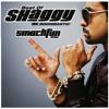 Shaggy - Mr. Bombastic (Smack Fun Remix) - DOWNLOAD DESCRIPTION !!