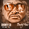 Shawty Lo - Booty Hoes