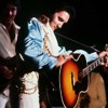 Elvis Presley - You Gave Me A Mountain  (Live in Dallas 12/28/1976)