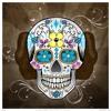 MEGA TRUMPET VS ELECTRO (TRA PERREO) - @LAN DJ FT GUSTAVO DJ 015 Portada del disco