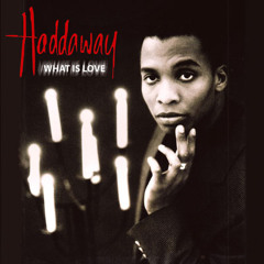 Haddaway Vs Tujamo - What Is Booty Bounce (Sacha DMB & Andy D Mashup) [Fun Radio Producer award]