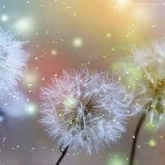 Positive Self-Belief Subliminal Affirmations