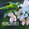 Vintage Culture, Constantinne, Felten - Eyes (Out Now)