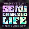 Third Eye Blind - Semi-Charmed Life (PINEO & LOEB Remix)