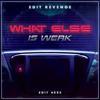 Edit Revenge - What Else Is Werk |free download