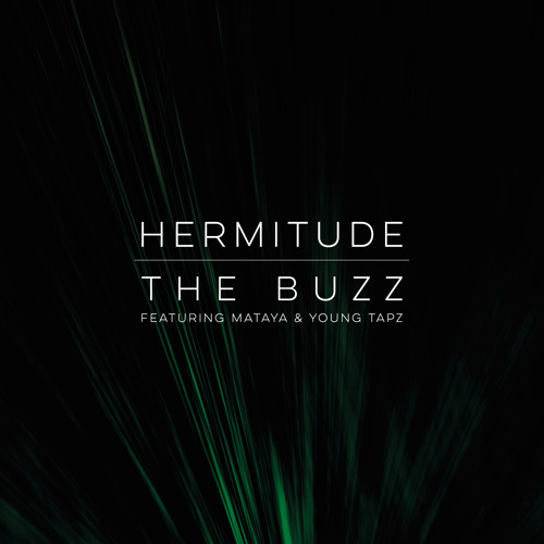 hermitude the buzz big krit