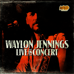 Waylon Jennings - Till I Can Gain Control Again