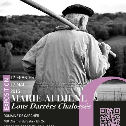FOCUS Marie AFDJENE - 22/04 - Radio MDM - Par Anthony Hillcock