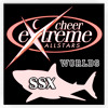 Cheer Extreme SSX Worlds 2015