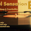 Thelowdeep & TranQuility - Soul Sensation (Love Lyrical Mix)