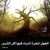 Download تلاوة من سورة البقرة للقارئ عبدالعزيز الأحمد عشاء الجمعة ٥-٧-١٤٣٦هـ Mp3
