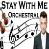 Stay With Me - Sam Smith - Orchestral