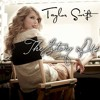 Story Of Us - Taylor Swift (Voice Only Cover)