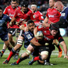 watch Super Rugby 2015 live streaming