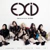 EXID - Ah Yeah English Cover [Short Ver.]