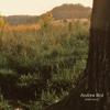 Andrew Bird - Tenuousness mp3